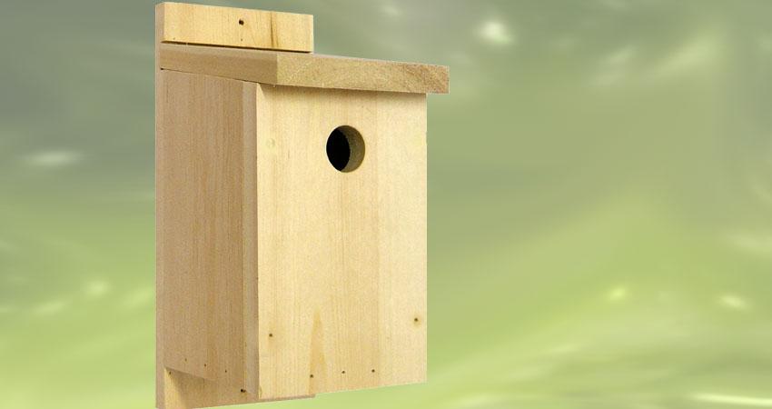 cassetta nido con foro circolare