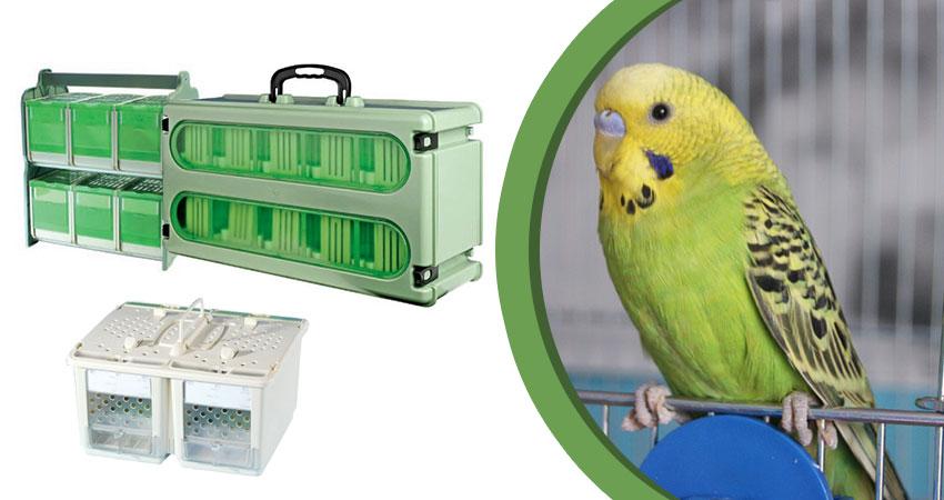Trasportini per Uccelli